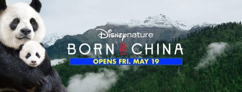 Born-In-China-Banner