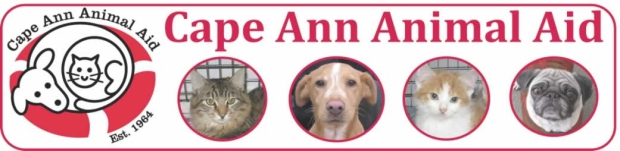 cape-ann-animal-aid