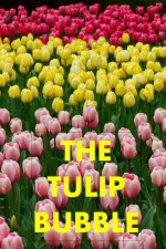 tulip_bubble